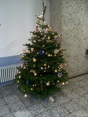Hausweihnachtsbaum