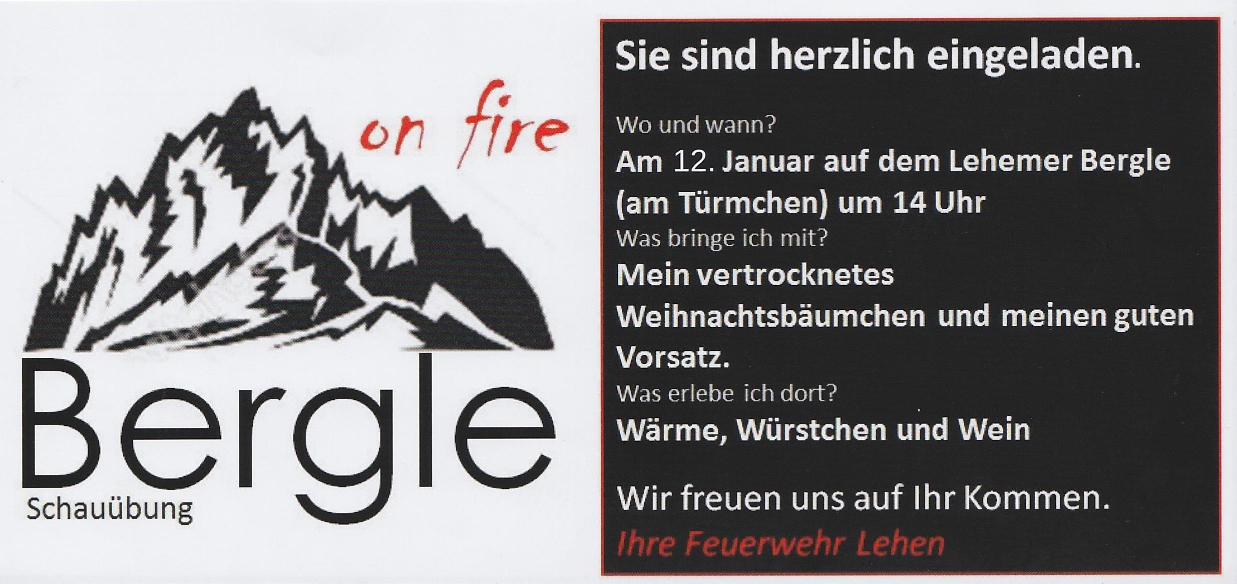 bergle 2019